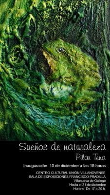 Exposición en Villanueva de Gállego - Sala Francisco Pradilla